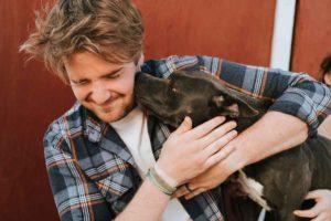 Hundesitting - Hundebetreuung einfach Geld verdienen